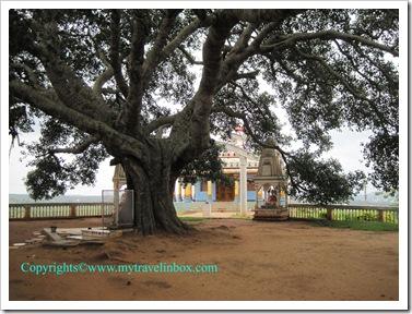 Matsyanarayana Temple 2